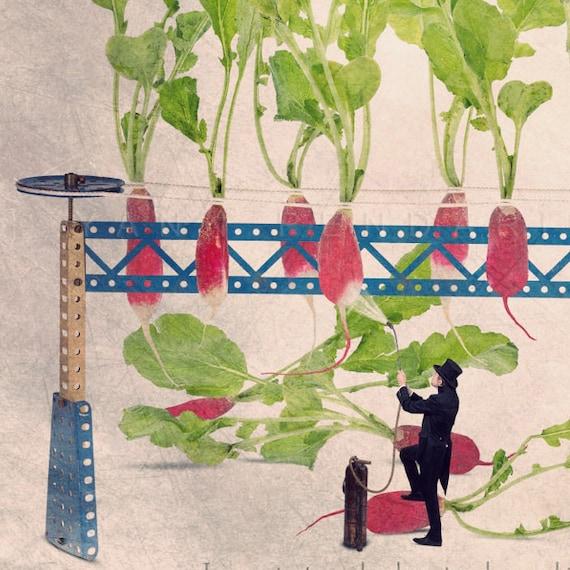 The radish tip painter, Food Photography, Kitchen Decor, radish Photography print, kitchen wall decor, Fun photography, Tiny trades