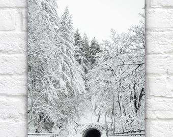 Snow Tunnel Photography Print, Portland Oregon Winter Photo, Pacific Northwest, Snow Decor, Winter Theme, Nature, Road Man Cave