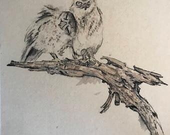 Ink Sketch of Owls
