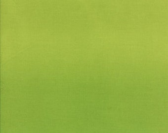 Ombre Lime Green by V and Co 25cm