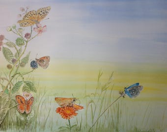 Butterfly Hedgerow