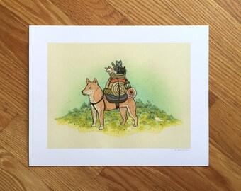 Shiba Inu - Pup adventurer | Fine Art Print by Nicole Gustafsson