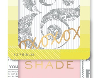 Pink Paislee Citrus Bliss - Insta Kit Frames & Overlays -- MSRP 4.00