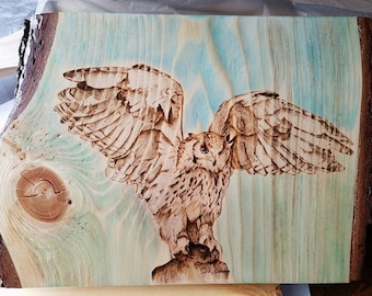 Owl landing  pyrography art   wood burning  watercolor  one of a kind  wall plaque