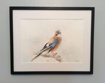 Jay bird print - watercolour - Giclee print - fine art - A3 - A4
