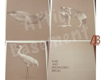 Rare and Endangered Species Art Print Portfolio Illustrations by Donna Westerman Instant Collection epsteam