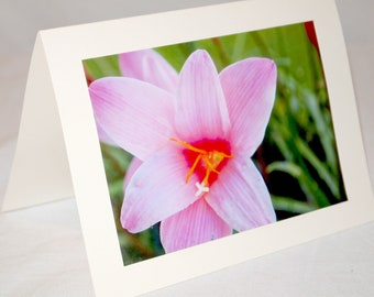 Set of 3 Floral Photograph Greeting Cards