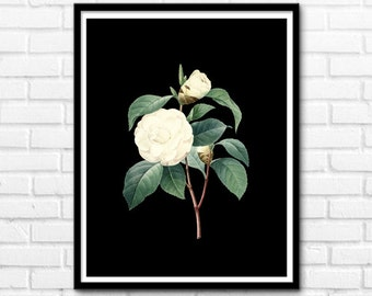 Instant Download Printable Art, Black and White Magnolia, Nature Decor, Flower Prints, Wall Decor INSTANT DOWNLOAD - 1040