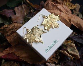 Real Maple leaf gold earrings