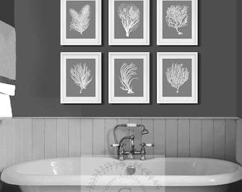 Beach Decor Wall Art,  a set of 6 white sea corals over grey background. Gift for her, beach house decor, beach bathroom decor, Coastal art