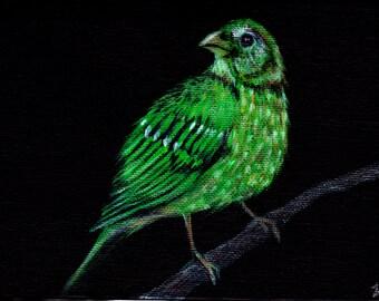 Green Bird by Lauren Bridgstock