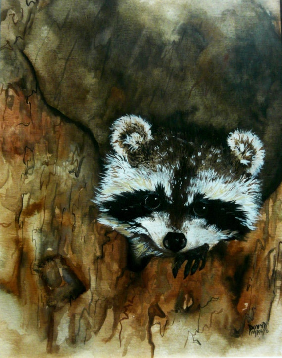 Raccoon Watercolor Art Painting Wildlife Painting Print