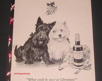 1950 Black & White Scotch Whisky, Vintage Print Ad, Scottie and Westie Under The Mistletoe, Morgan Dennis Art, Christmas Theme