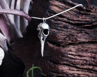 Gothic Bird Skull Necklace, Gift for Him, Silver Pendant, Taxidermy Jewelry, Steam Punk, Victorian, Statement, Macabre, Oddities, Gothic