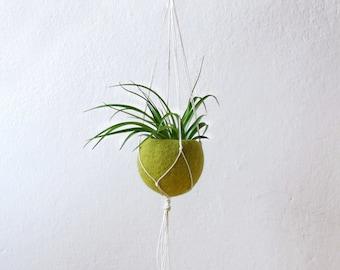 Planter with hanger, Boho gift girlfriend, Macrame plant hanger, Air plant holder, Succulent planter, Green Felt planter, Gift for her