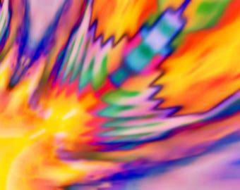 Summer Feather - Digital Art printed on canvas