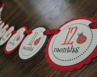 Red and Black Little Ladybug Collection Just Born/0-12 mos Banner with clips. First Birthday Photo Banner. Picture Banner. Lady  Bug.
