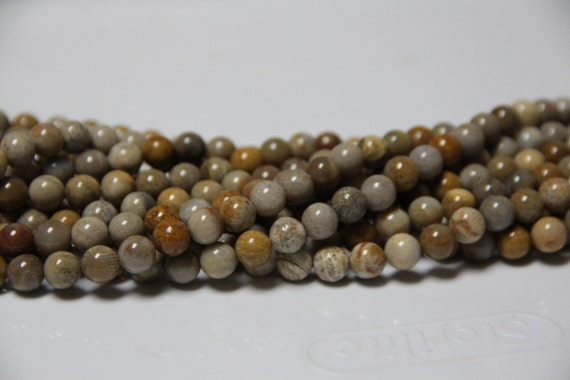 """Fossil Coral 8mm smooth round beads 16"""" length full strand"""