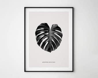 Monstera leaf print, Tropical Leaf print, Monstera Deliciosa, Botanical Print, Leaf Poster, Wall Printable, Botanical Art, Contemporary