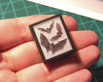 Three BATS  SHADOW BOX  -  Specimen Case - Fake taxidermy - Oddities - Curiosities - Digital download  . Tutorial - Scale 1:12 / 6th