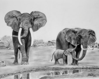 Original Elephants at the water hole drawing (Graphite pencil)