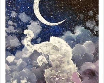 Silent night of cat