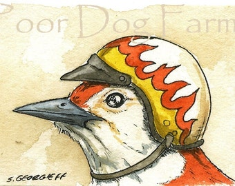 ACEO signed PRINT - Woodpecker in biker helmet