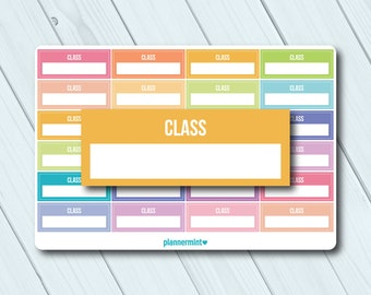 Class Stickers - Fillable Tracker - Erin Condren Life Planner - ECLP - Happy Planner - School Stickers - College - Matte or Glossy Stickers