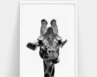 Giraffe Wall Art, Safari Wall Art, Giraffe Print, Safari Print, Animal Wall Art, Safari Animal Print, Living Room Art, Nursery Animal Poster
