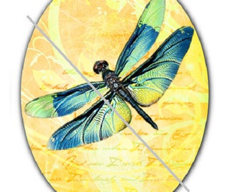 18x25cm, dragonfly, a yellow background