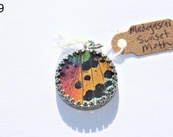 Madagascar Sunset Moth Lower Wing Necklace