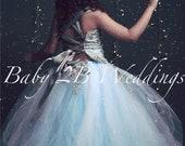 Blue Dress Silver Dress F...