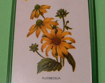 A Magnet Made From A Vintage Playing Card. Rudbeckia