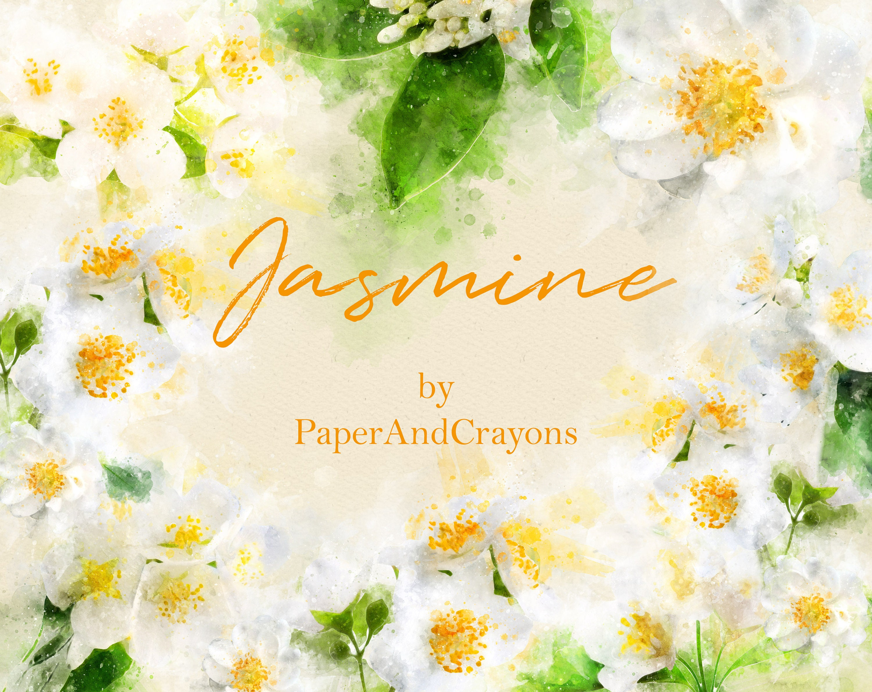 Jasmine Watercolor Clipart Set White Floral Clip Art Girly