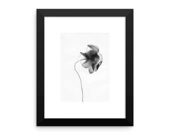 Framed Flower Photogram photographic print in multiple sizes, fine art, home decor, plant photography, modern design, plant lover flower art