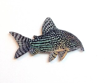 Handcrafted Plastic Corydoras Catfish Cory Your Choice of Pin Brooch, Necklace or Keyring Gifts for Her Gifts for Him cory18c