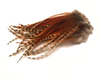 1 Dozen 5 inch Barred Ginger and Brown SHORT Grizzly Rooster Feathers