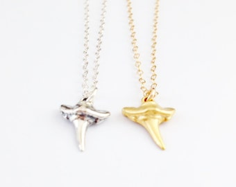 Tiny Shark Tooth - Gold or Sterling Silver