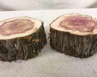2 Cedar Wood Slices