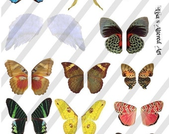 Digital Collage Sheet Wings 2 (Sheet no. W2) Instant Download