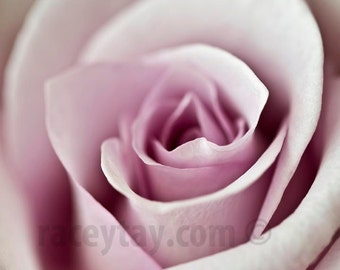 Flower Photography, Pink Rose, Pastel Decor, Macro Close Up, Pink Flower Photo, Girl Nursery Decor