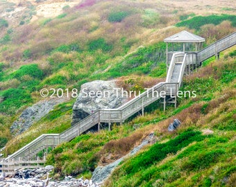 Coquille Point Stairs - Photographic Print