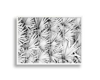Palm Leaves Print, Black and White Print, Boho Wall Art Print, Foliage Art, Monochrome Wall Decor, Coastal Print