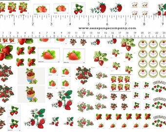 Dollhouse Miniature Shabby Chic Decals 1:12 Scale Strawberries