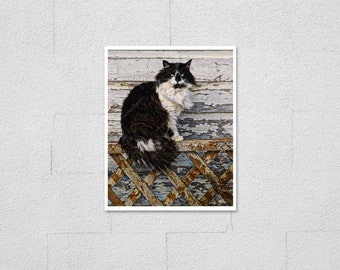 Black and White Tuxedo Cat Photo, Long Haired Stray Cat, Peeling Paint on Wood Lattice Fence, Archival Cat Photography Print, Cat Lover Gift