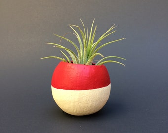 Air Plant Pod - red top