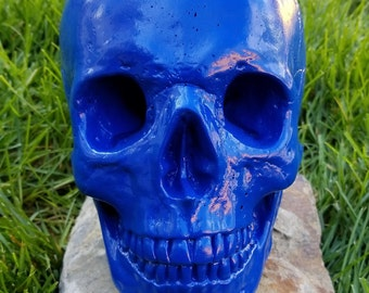 Realistic life size painted concrete skull - blue
