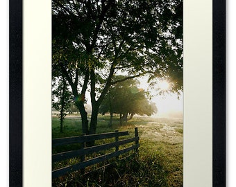 Dawn, Framed Print