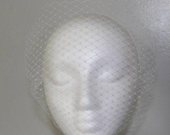 Simple Birdcage Veil