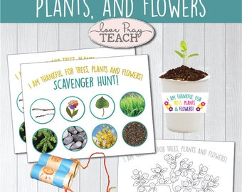 """LDS Primary 1 Sunbeams Lesson 10: """"I Am Thankful for Trees, Plants, and Flowers""""Lesson helps include a game,coloring page,craft idea & more!"""